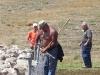 Kohta portti aukeaa ja lampaat lähtevät